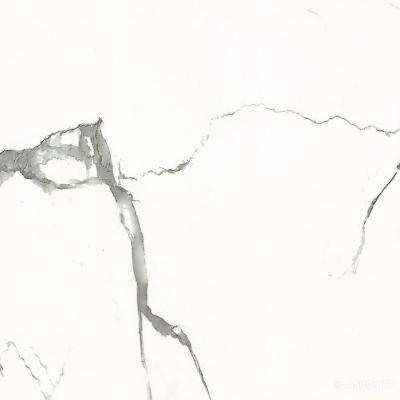 Керамогранит Almera Ceramica Carrara GxJ00160S 9×600×600
