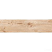 Керамогранит Zeus Ceramica Briccole Wood ZxxBL3R
