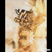 Плитка Cersanit Miranda DEC BUTTERFLY 8×500×400