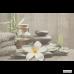 Плитка Cersanit Olivia DEC GREY SPA1 8×400×250