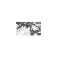 Плитка ESME WHITE GLOSSY 9×600×297