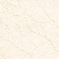 Керамогранит Cerama Marke BIOTTO CHINO (підлога)  80х80