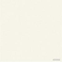 Керамогранит Megagres Моноколоры WHITE POL PJ6900 8×600×600