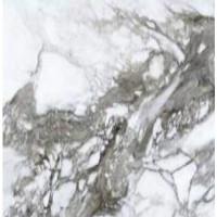 Керамогранит Roberto Cavalli 0500849 Lush Calacatta Renoir Lx Rt 1190x1190