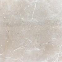 Напольная плитка BESTILE VERONESE GRIS BASE BRILLO 8×750×750