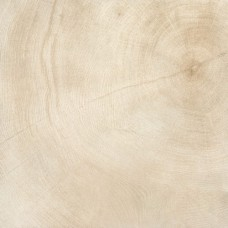 Керамогранит Provenza W-AGE Marrow (Bianco) Naturale 60x60