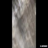Плитка Roberto Cavalli Tanduk 0556748 MULTICOLOR LAP 10×1200×600