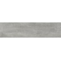 Керамогранит Argenta Ceramica POWDER WOOD CONCRETE 8×900×225