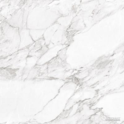 ⇨ Керамогранит | Керамогранит Argenta Carrara WHITE SHINE в интернет-магазине ▻ TILES ◅