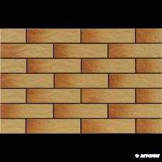 Клинкер Cerrad Gobi RUSTICO 6×245×65