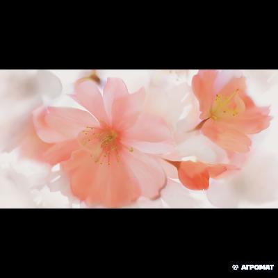 ⇨ Керамогранит | Керамогранит Flaviker Supreme SPDI133 SP.DECORO SUBLIME в интернет-магазине ▻ TILES ◅