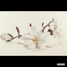 Плитка Opoczno Flora MAGNOLIA декор 9×450×300